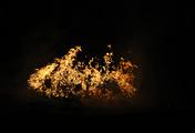 Огонь Паралимпиады