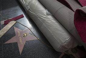 Звезда Дональда Трампа на Аллее славы Голливуда