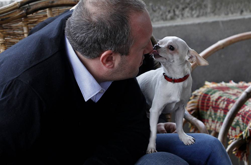 Georgia's President Georgy Margvelashvili and his daughter's dog Alfi at his home in Dusheti