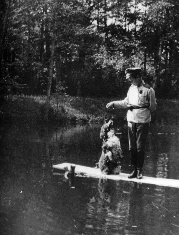 Tsarevich Alexei Romanov with his spaniel Joy, 1915