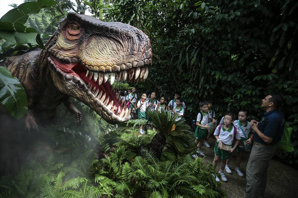 A zoo guide followed by primary school students look at an animatronic display depicting a Tyrannosaurus Rex in the Zoo-Rassic Park attraction, Singapore, November 16