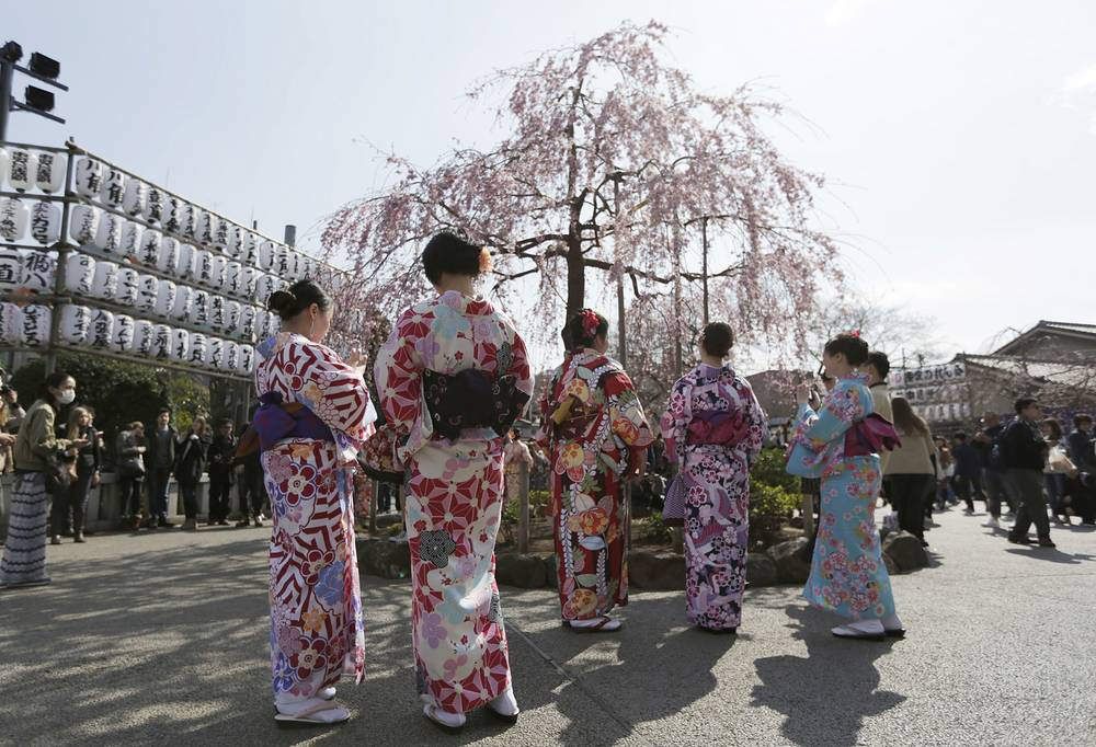 Tourists wearing a traditional Japanese kimono look at blooming cherry blossoms at a temple in Tokyo, Japan