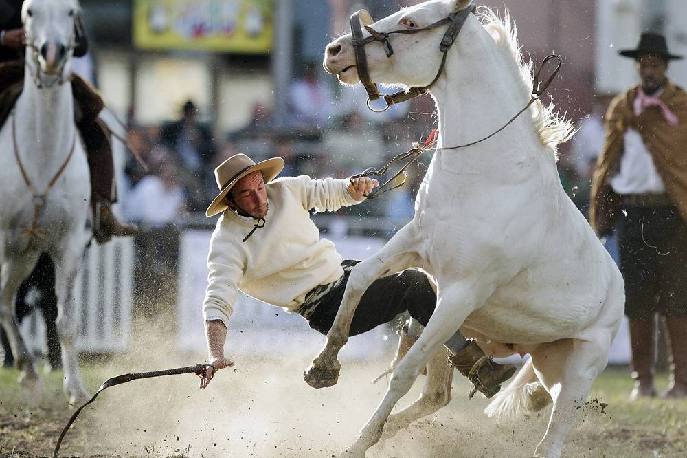 A South American cowboy known as a gaucho is thrown off a wild horse during the Criolla del Prado rodeo in Montevideo, Uruguay, April 12
