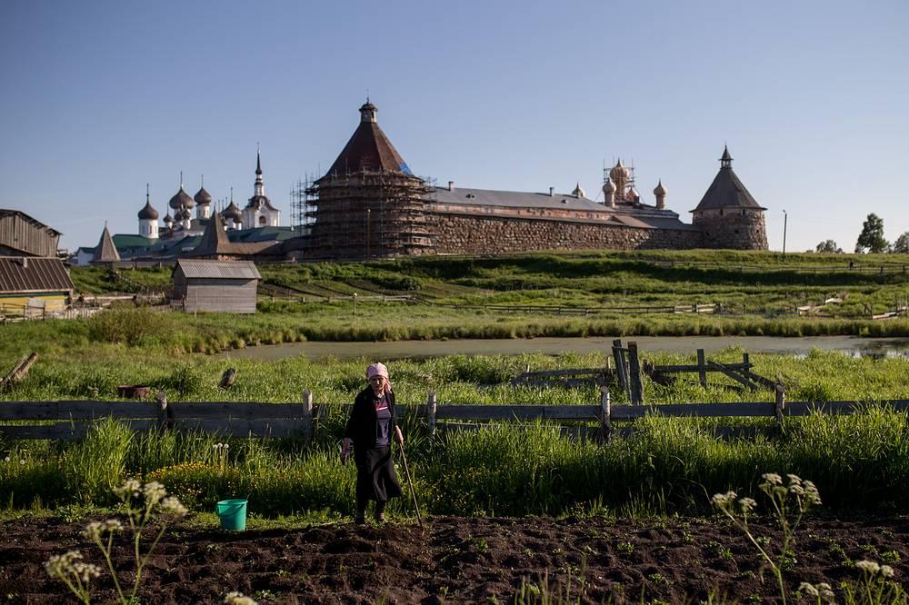 A woman works in a kitchen garden in the Solovetsky village on Bolshoy Solovetsky Island