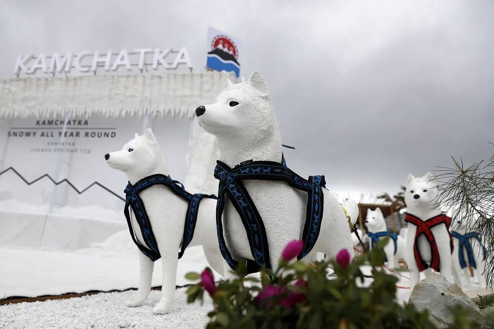 Kamchatka Pavilion at the 2017 Eastern Economic Forum