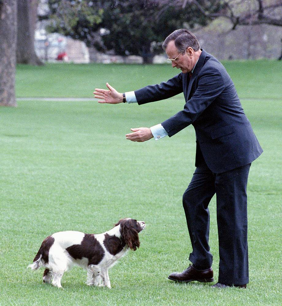 US President George Bush gestures for his dog, Millie, to return home after the first dog ran to Marine One on the White House lawn in Washington, 1989