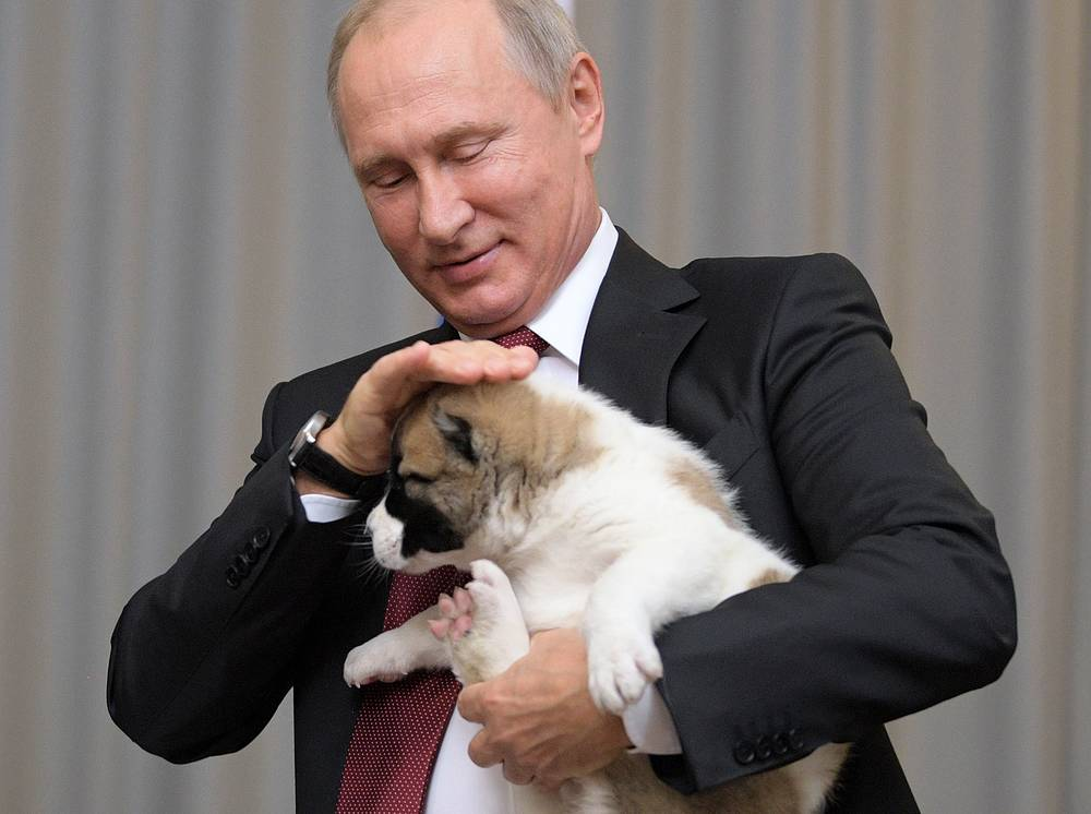 Russia's President Vladimir Putin holds alabai puppy given to him by Turkmenistan's President Gurbanguly Berdimuhamedow for his birthday, 2017