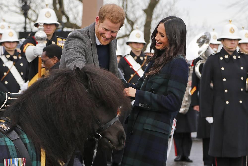 Britain's Prince Harry and his fiancee Meghan Markle meet a Shetland Pony as they arrive at Edinburgh Castle in Edinburgh, Scotland, February 13