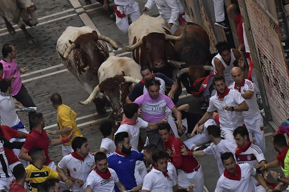 Hundreds of thousands of visitors from all over the world attend the fiesta. Many of them physically participate in the highlight event - the running of the bulls, or encierro - where they attempt to outrun the bulls along a route through the narrow streets of the old city