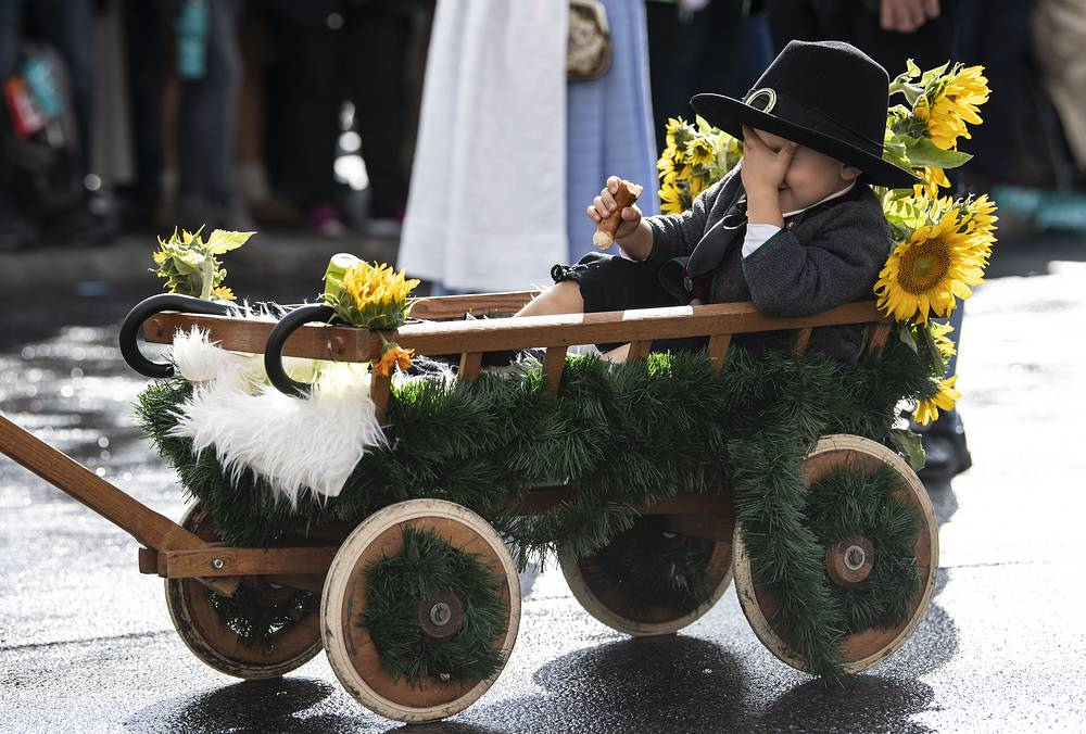 A little boy in a handcart hides his face from a photographer during the shooting club and traditional costume parade on the second day of the 185th Oktoberfest beer festival in Munich, September 23