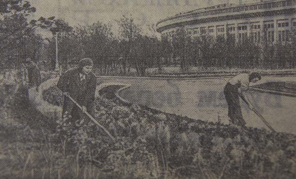 Посадка цветов на территории Центрального стадиона в Лужниках к открытияю стадиона, 26 июля  1956