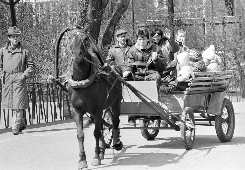Катание на лошадях. 1986 год.