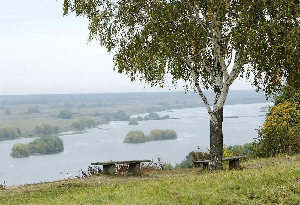 Окрестности села Константиново, 2005  год