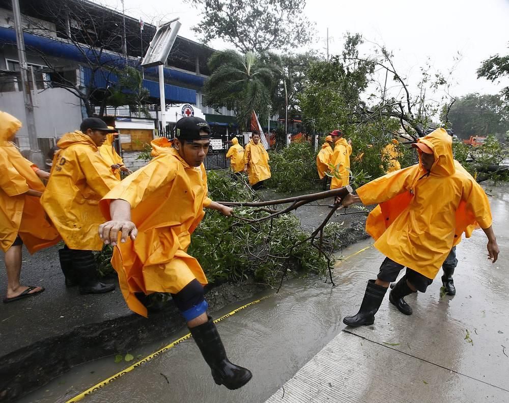 Ураганный ветер, порывы которого достигали 185 км/ч, валил деревья и опоры линий электропередачи