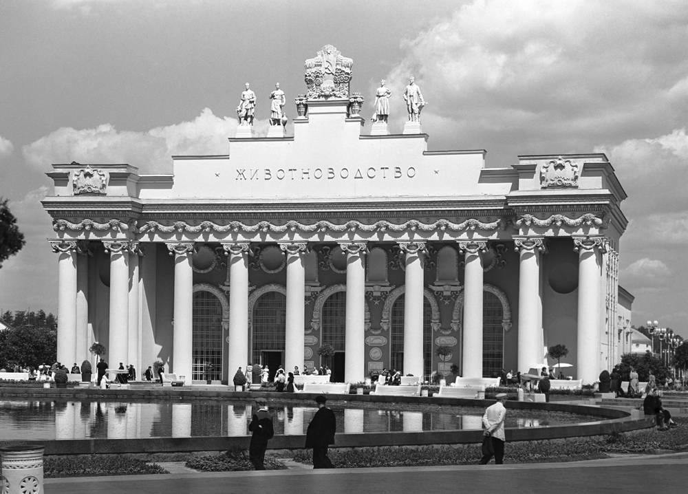 """Павильон """"Животноводство"""", 1956 год"""