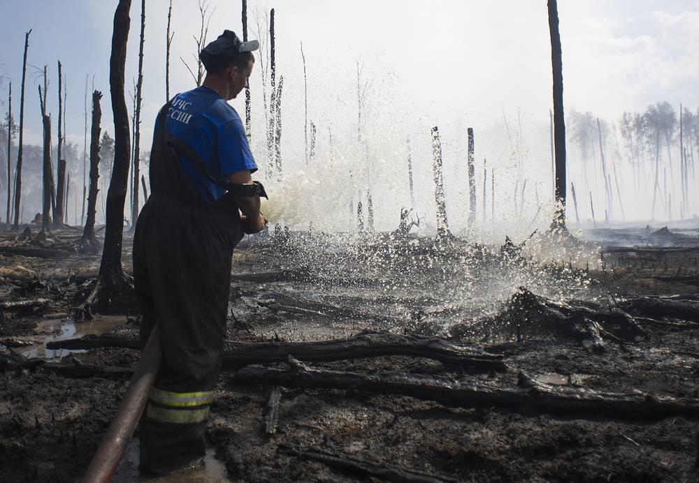 Для ликвидации всех природных пожаров задействованы 488 человек и 119 единиц техники