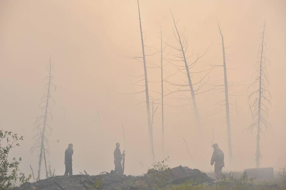 По данным Государственной противопожарной службы на конец августа 2013 года, площадь лесных и торфяных пожаров в Центральном федеральном округе по сравнению с аналогичным периодом 2012 года выросла на 48%. Возгорания торфяников были зарегистрированы в Иркутской и Красноярской областях. На фото: тушение пожара в лесотундре под Норильском, 2013 год