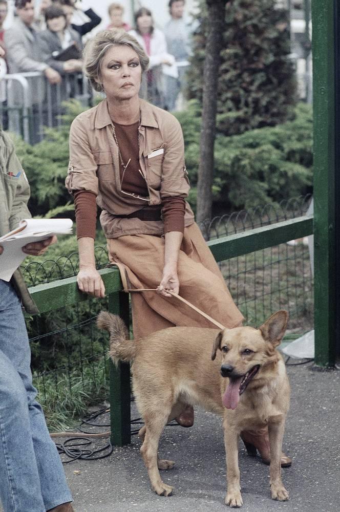 В 1973 году, незадолго до своего сорокалетия, Брижит Бардо объявила о завершении кинематографической карьеры и начала деятельность по защите животных