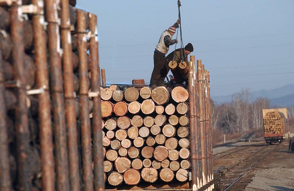 На долю древесины и изделий из нее приходится 7,08% российского экспорта. На фото: погрузка древесины для отправки в Китай