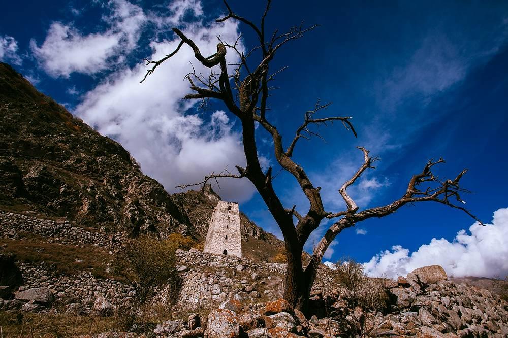 Неподалеку от Черекского ущелья, в селе Верхняя Балкария, сохранились остатки древних башен и крепостей