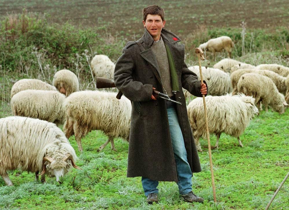 Албания. Выпас овец, апрель 1997 года