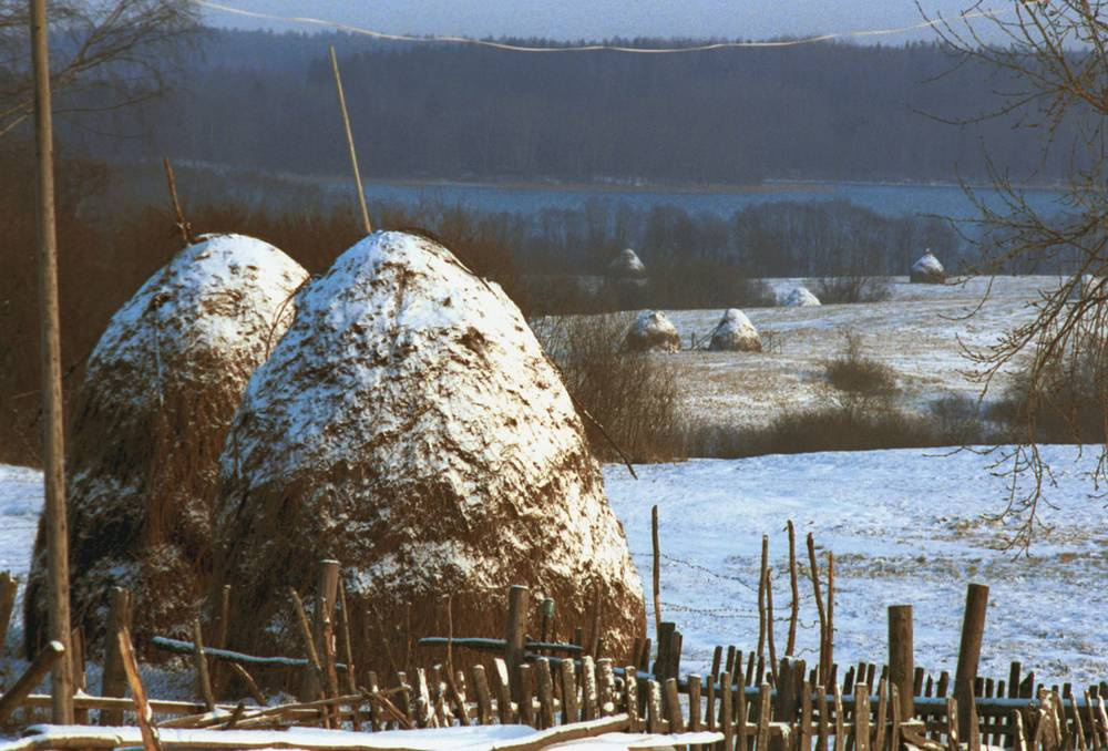 Зимнее утро в Новгородской области, 1990 год