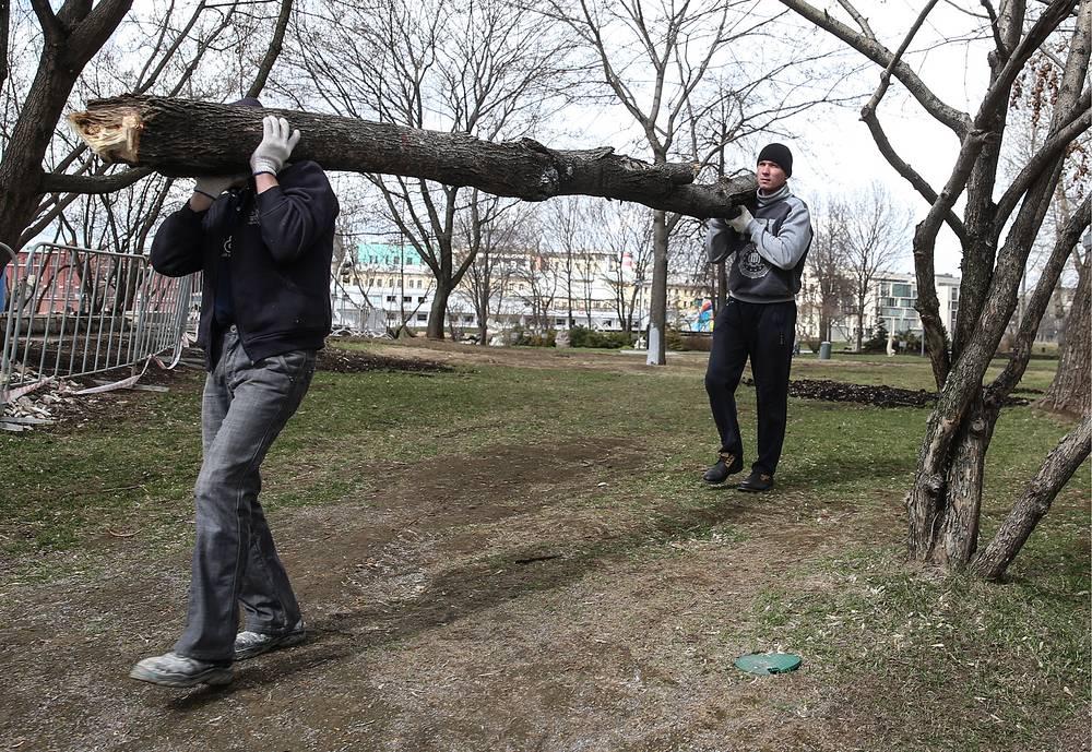 Уборка упавших  деревьев  в парке искусств МУЗЕОН