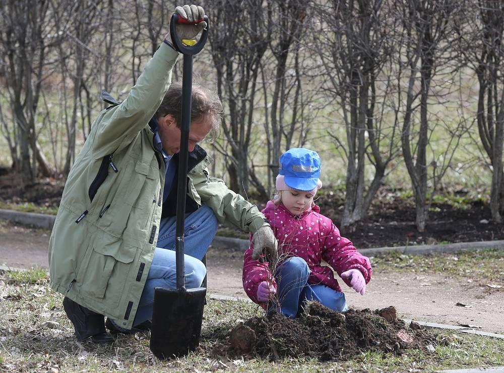 Высадка  саженцев в в Ботаническом саду в Москве