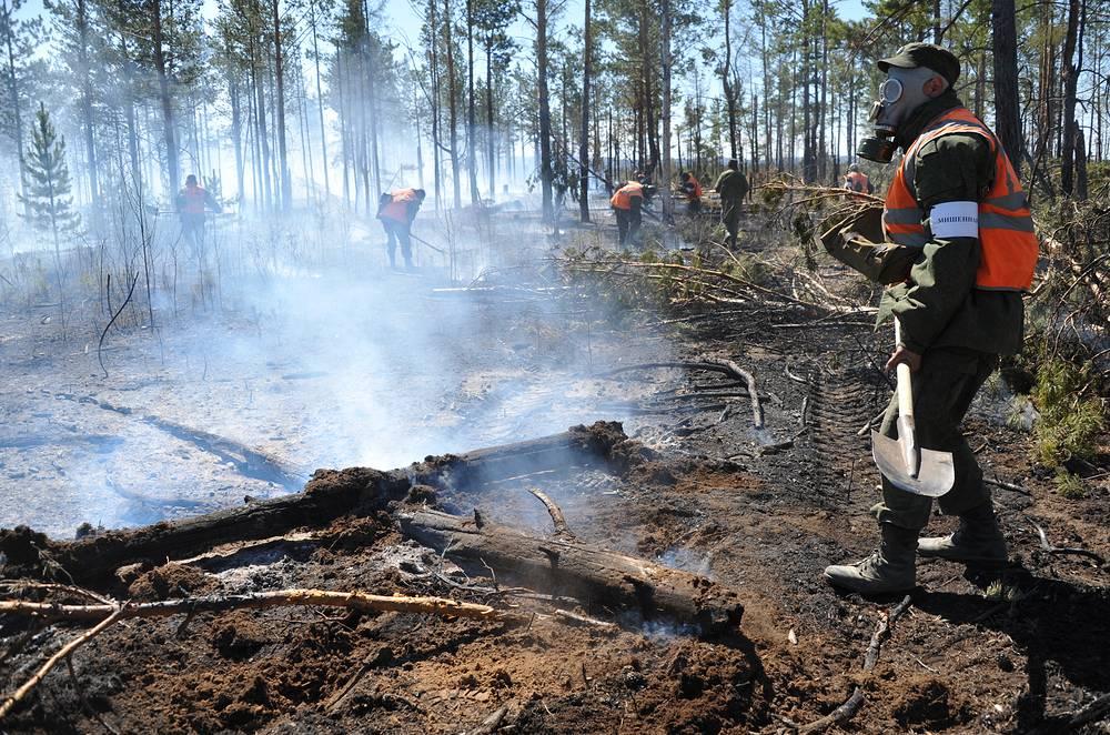 По данным на 15 мая, площадь лесных пожаров в Сибири за сутки увеличилась более чем в полтора раза. Больше всего лесов горит на территории Забайкальского края