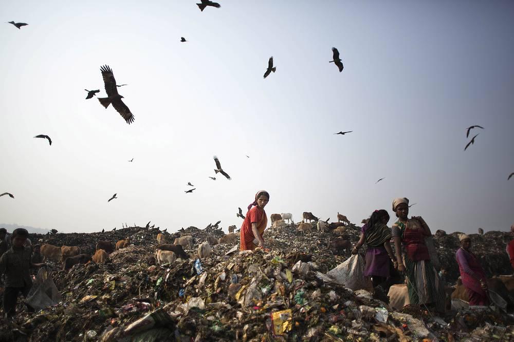 Мусорная свалка в районе города Гувахати, в штате Ассам, Индия