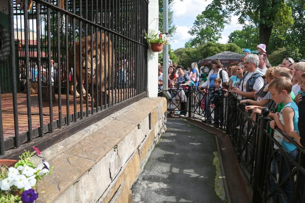 Зоопарк ежегодно его посещают порядка 650 тыс. человек