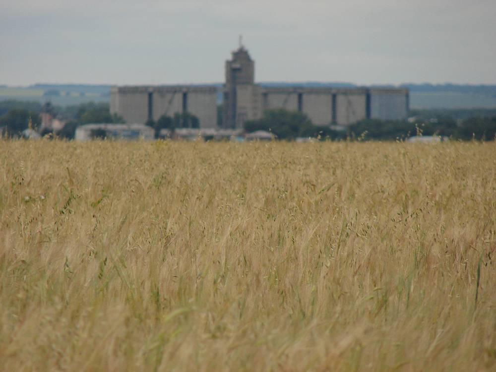 По итогам уборочной кампании-2016 в Алтайском крае собрали 5,12 млн т зерна в бункерном весе