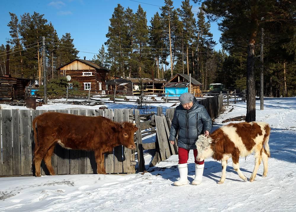 Жительница села во время выпаса коров