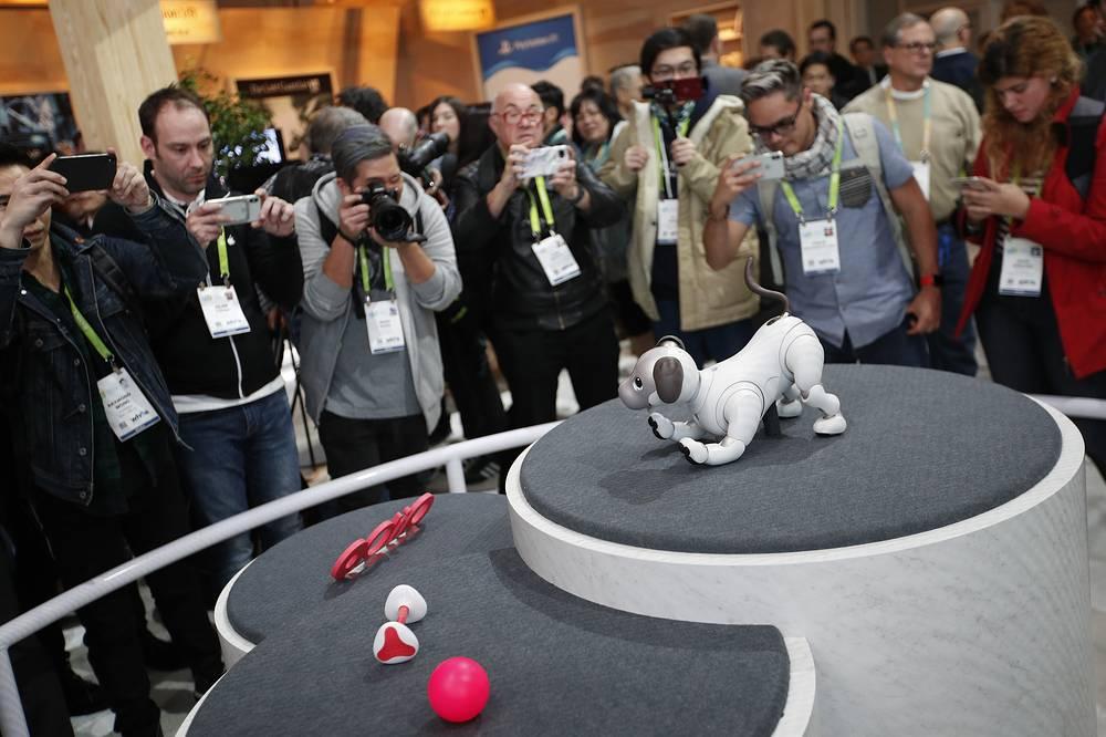Собака-робот Aibo