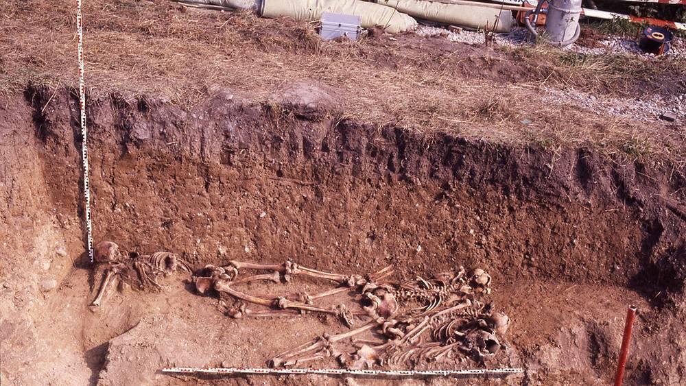 После обнаружения останки хранились в институте археологии, действующем при Цюрихском университете /Фото предоставлены Управлением археологии Цюриха/