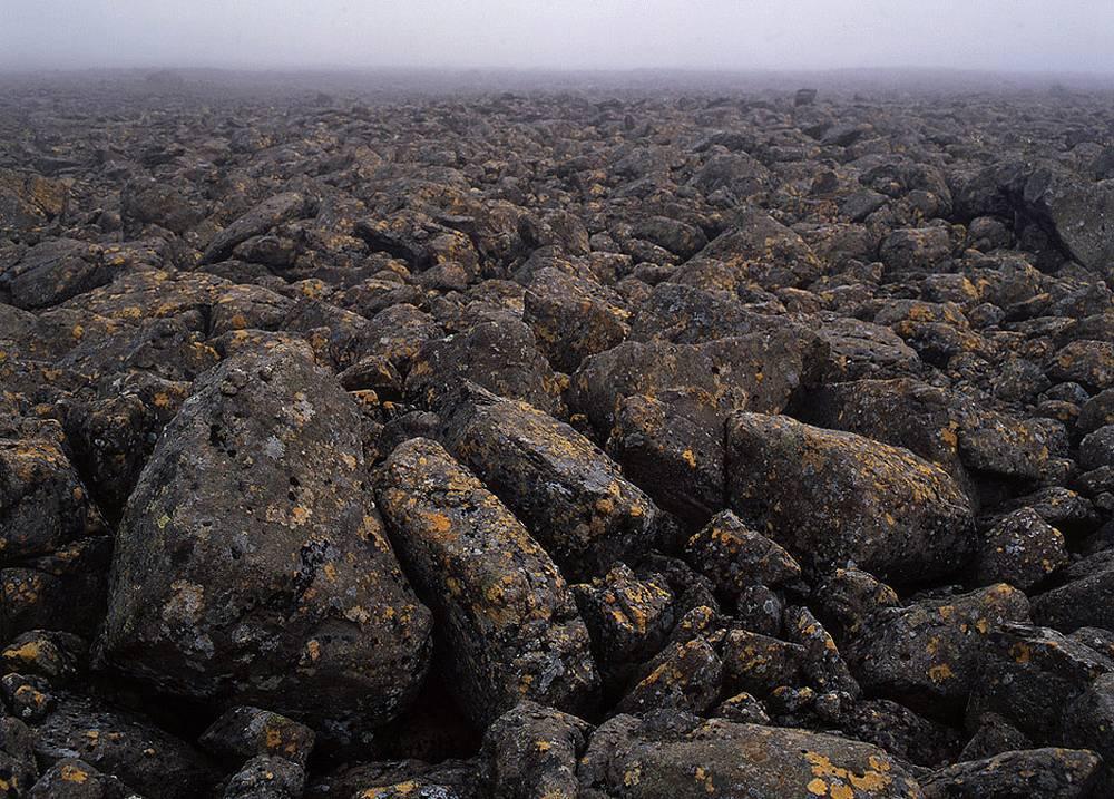 Плато Путорана. Каменная пустыня