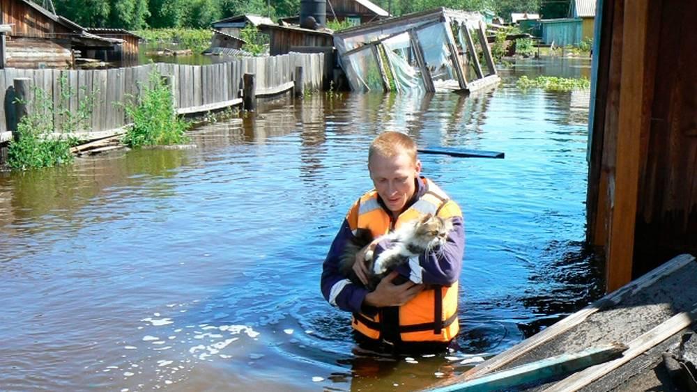 Наводнение в Амурской области. Фото EPA/ИТАР-ТАСС