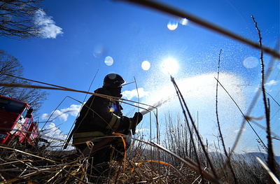 МЧС зафиксировало снижение количества природных пожаров в Подмосковье на 35%