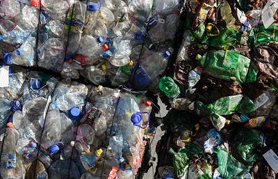 Ставрополь начнет переход на раздельный сбор мусора