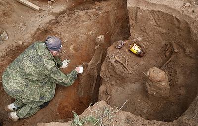 Палеонтологи извлекли под Кировом останки двух парейазавров