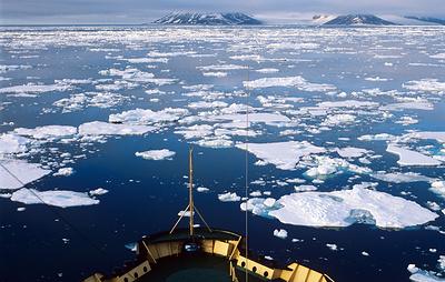 Первую выставку об истории освоения Арктики планируется открыть в бухте Тихая в 2019 году