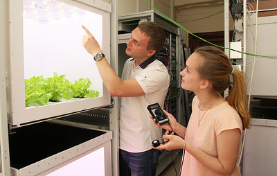 Томские ученые создали облучатель для выращивания растений в Арктике