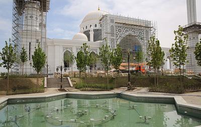 Делегация Саудовской Аравии прилетела в Чечню на открытие самой большой мечети в Европе