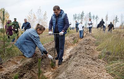 Спикер Воронежской облдумы принял участие в высадке леса на месте горельников