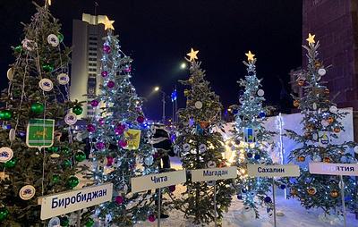 Во Владивостоке установили улицу с елками в честь всех дальневосточных регионов