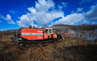 Приамурье закупит технику для защиты от лесных пожаров на 94 млн рублей