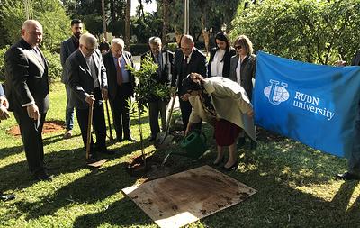 Саженец мандарина посадили в парке посольства России в Ливане выпускники РУДН