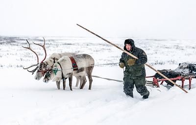 В Якутии на соревнованиях Arctic Skills выберут лучшего оленевода
