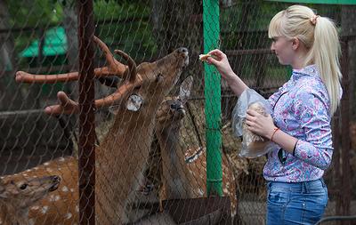 Зоопаркам в Приморье разрешат принимать посетителей с 6 июня