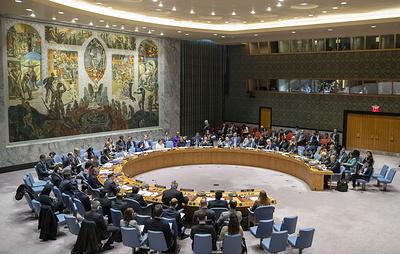Совбез ООН не принял резолюцию РФ о продлении трансграничной помощи Сирии через один КПП